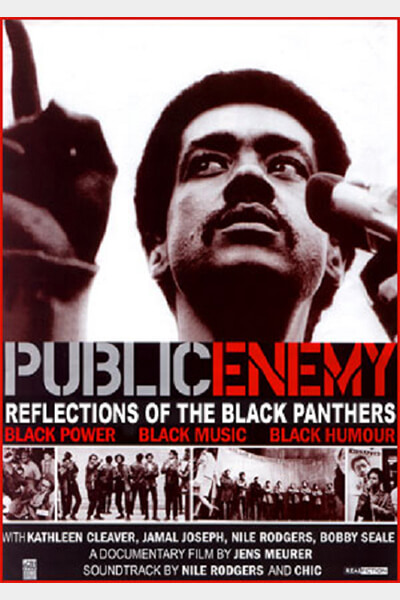 _public enemy